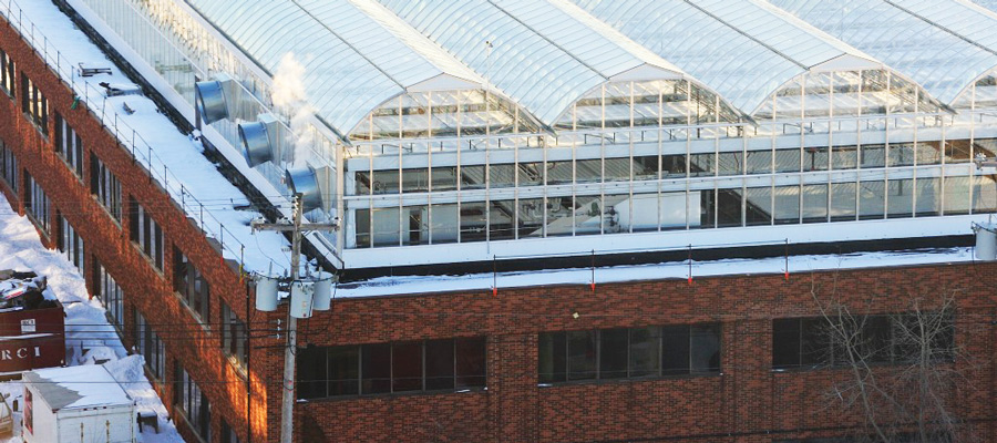 Beyond the Green Roof: Greenhouses Grow Possibilities for Urban Building Owners