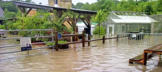 Toronto Flooding Tests Green Design at Evergreen Brick Works