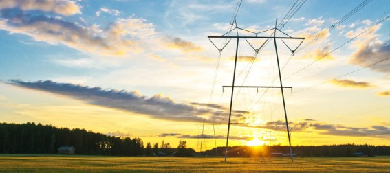 From Smart Grids to Smart Cities