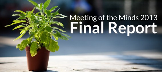 Meeting of the Minds 2013 Final Report Now Available