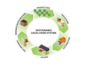 sustainable-food