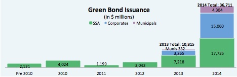 Source: The Climate Bonds Initiative, J.P. Morgan as of February 5, 2015. Includes use of proceeds Green Bonds and the Toyota ABS