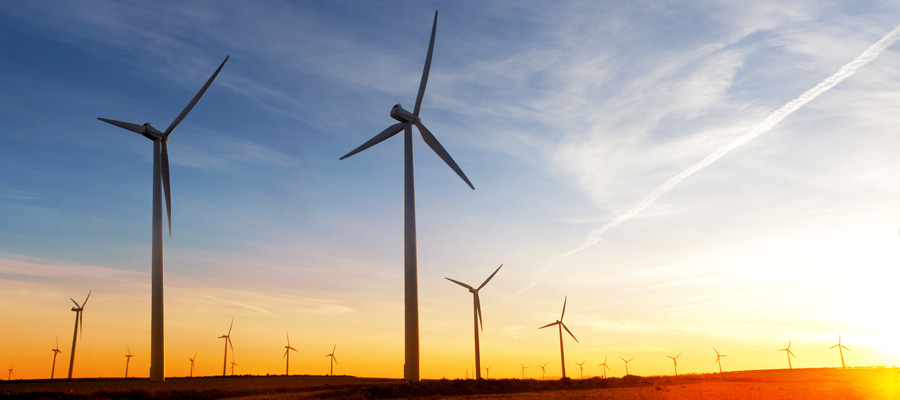 What Are Green Bonds and Why All the Fuss?