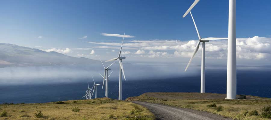 New York, Hawaii, California Race to 50 Percent Renewables