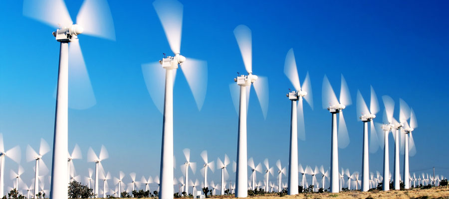 Corporations Lead in 100 Percent Renewables