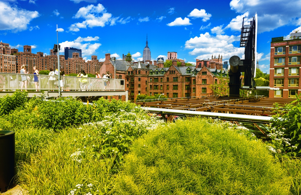 New Public and Private Funding Strategies for Urban Parks