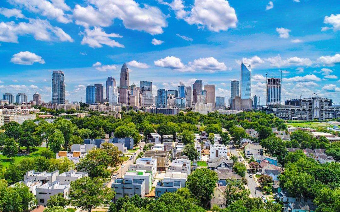 Trees Play a Key Role in a Sustainable Urban Future