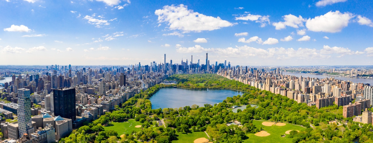 The Care of Forested Natural Areas in American Cities